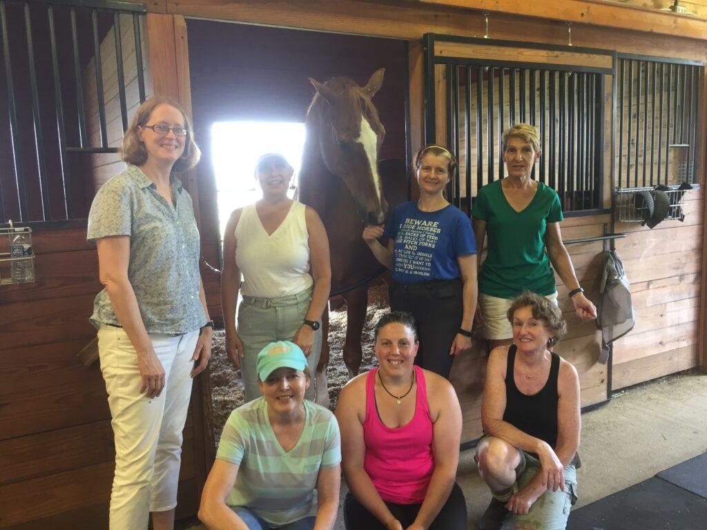 equestrian-horse-stable-friends-berni-k